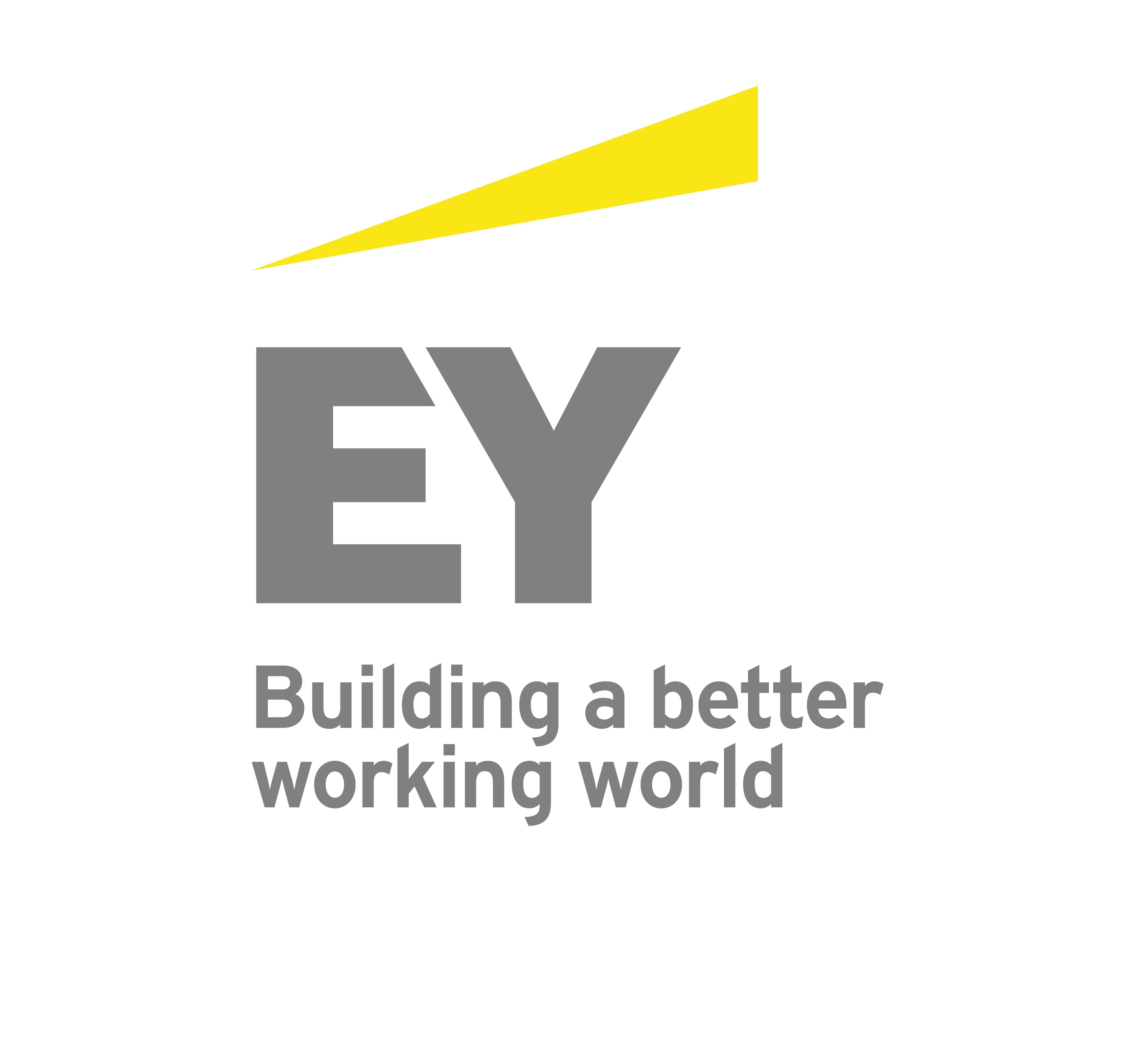 Ernst & Young ShinNihon LLC