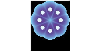 The Japanese Society for Regenerative Medicine (JSRM)